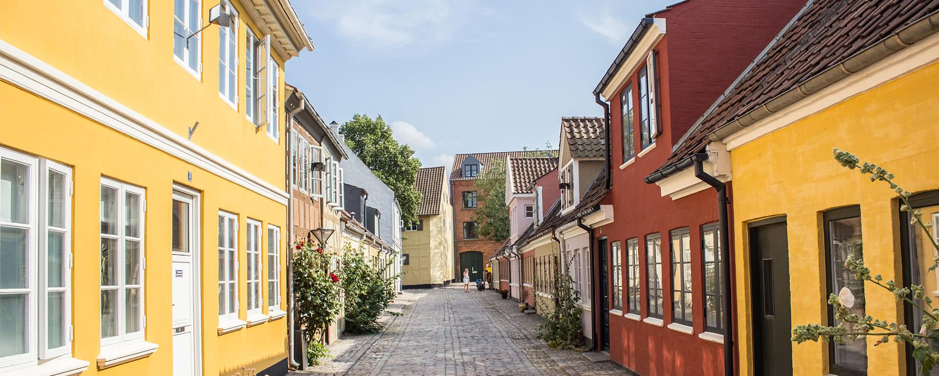 Titelbild von Odense