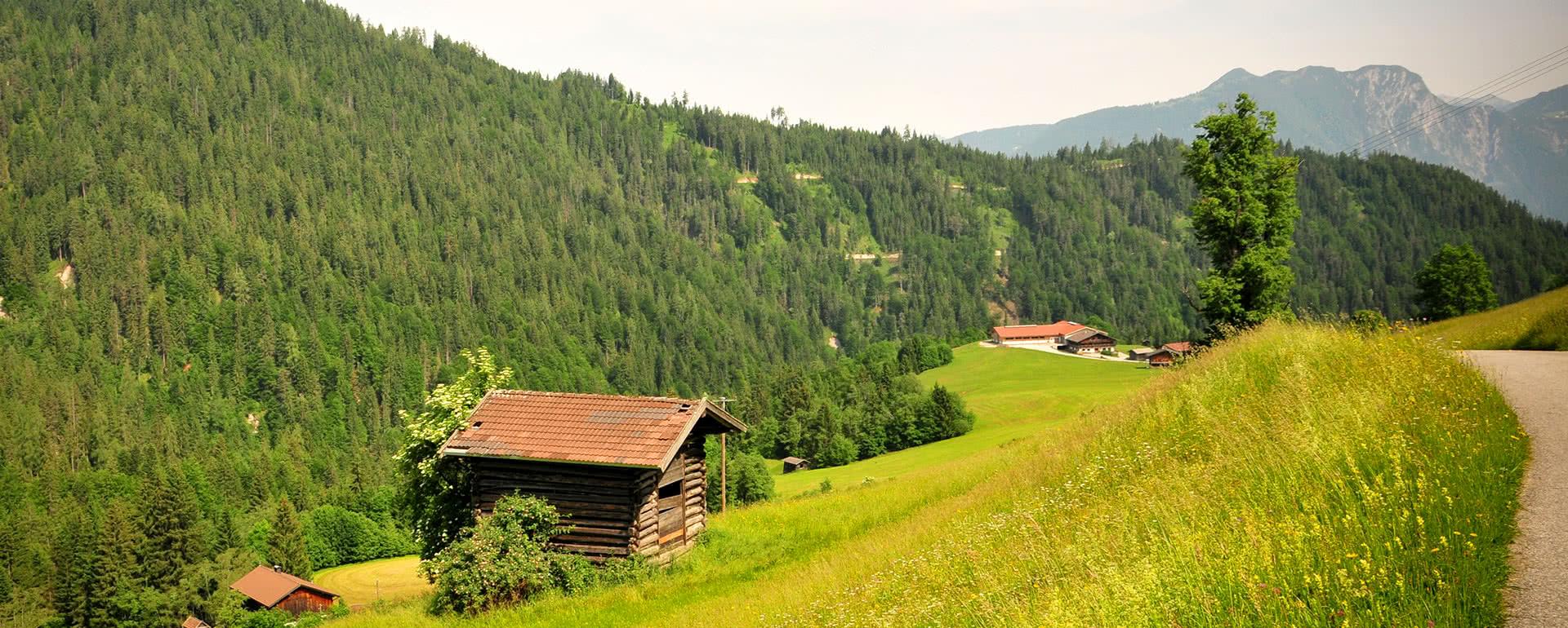 Titelbild von Wildschönau